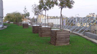 Zöldtető az északkeleti oldalon, 2005